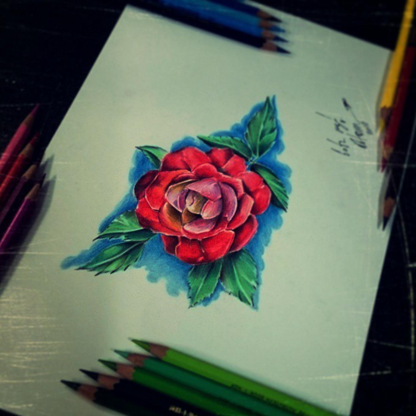 тату эскиз роза и листья