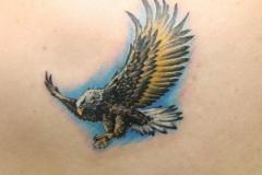Eagle-tattoo