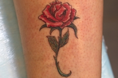 Rose-tattoo-classic