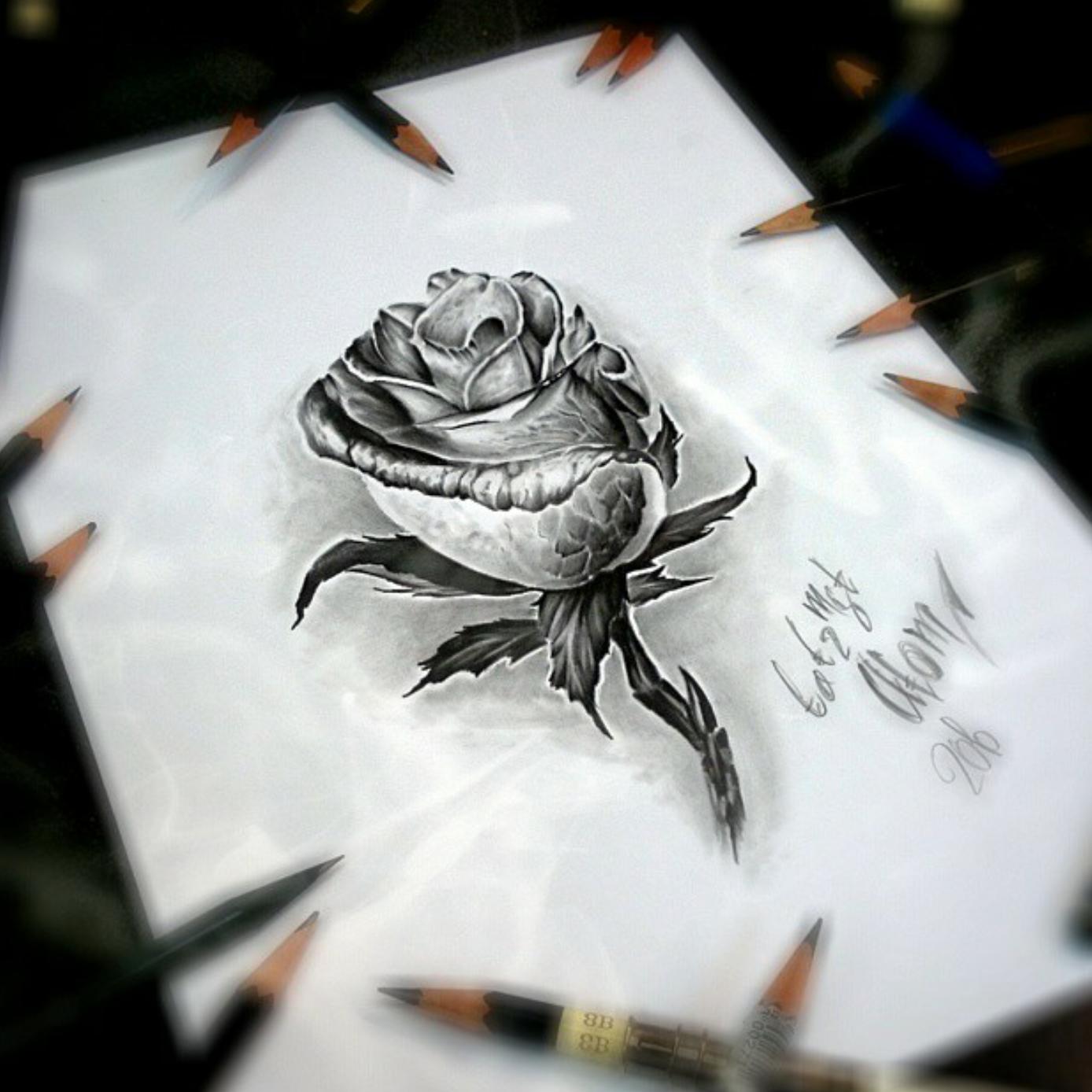 тату эскиз роза в карандаше
