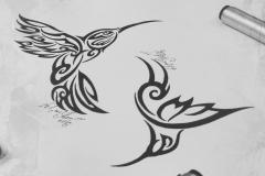 Тату эскизы колибри