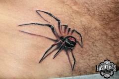Spider-tattoo-threeD