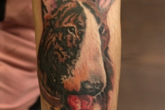 Tattoo-bullterier