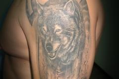 Tattoo-wolfff